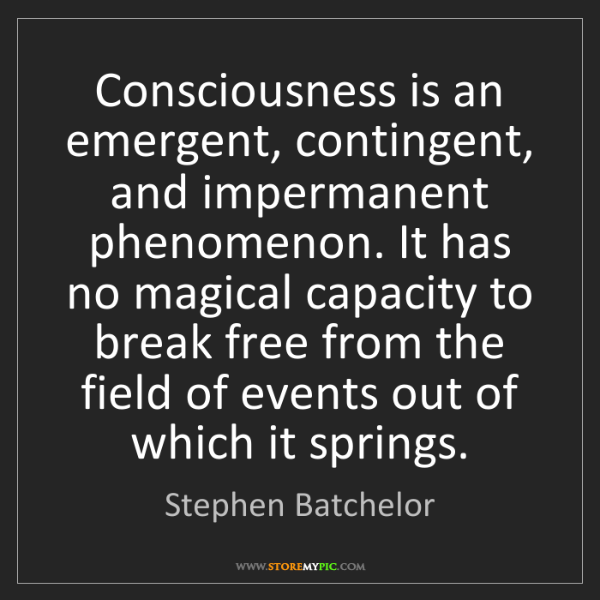 Stephen Batchelor: Consciousness is an emergent, contingent, and impermanent...