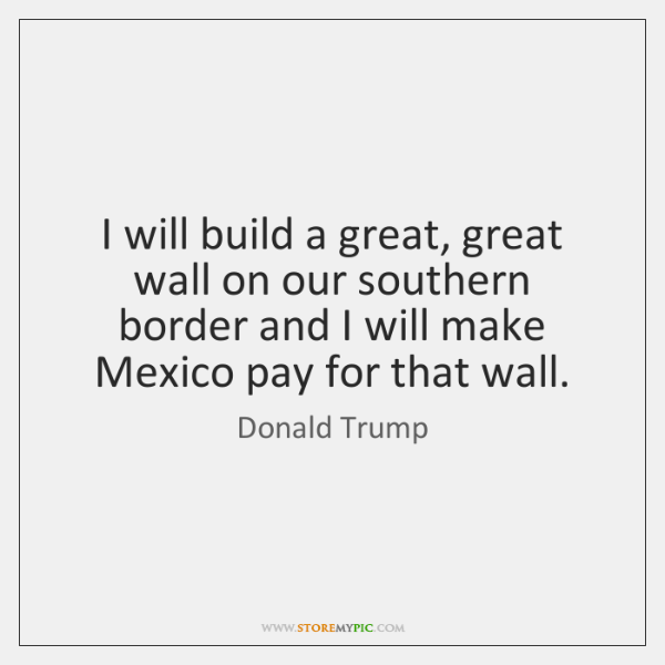 I will build a great, great wall on our southern border and ...