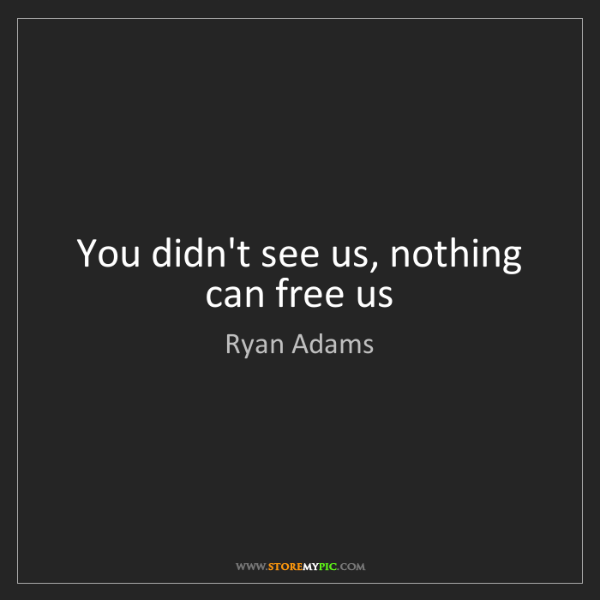 Ryan Adams: You didn't see us, nothing can free us