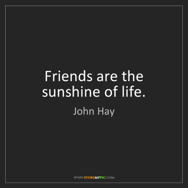 John Hay: Friends are the sunshine of life.