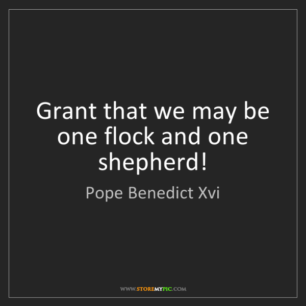 Pope Benedict Xvi: Grant that we may be one flock and one shepherd!