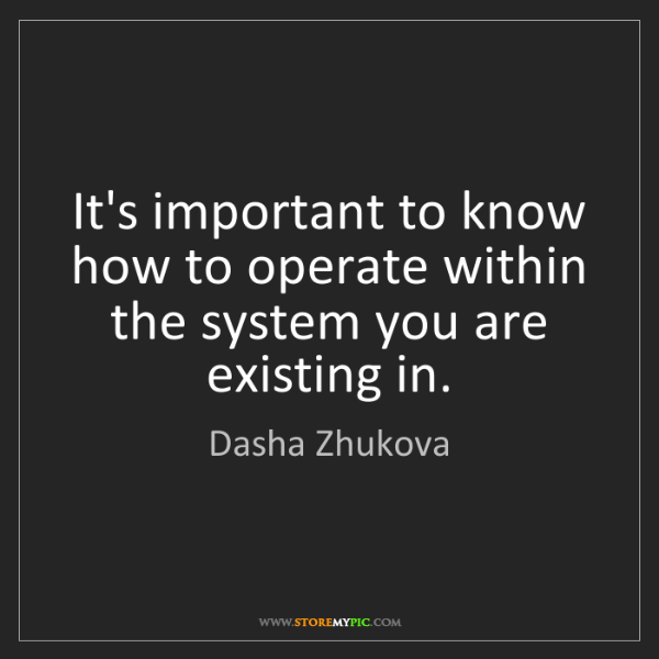 Dasha Zhukova: It's important to know how to operate within the system...