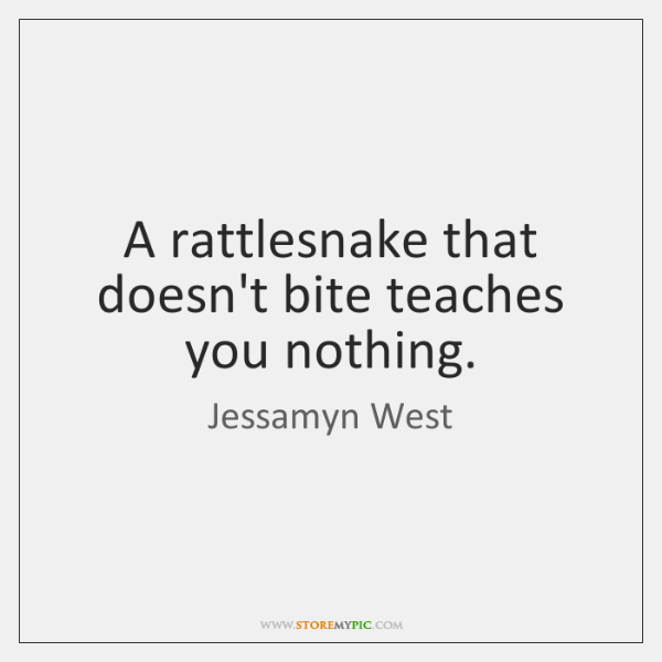 A rattlesnake that doesn't bite teaches you nothing.