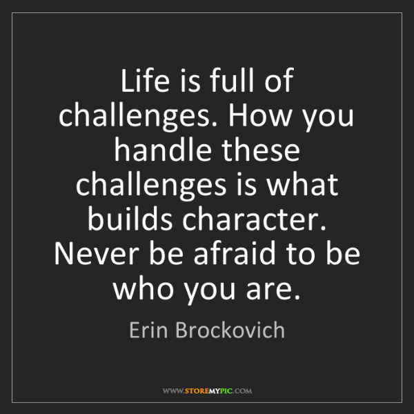 Erin Brockovich: Life is full of challenges. How you handle these challenges...