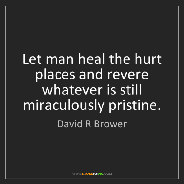 David R Brower: Let man heal the hurt places and revere whatever is still...