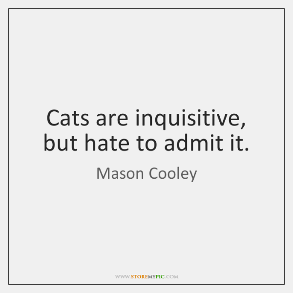 Cats are inquisitive, but hate to admit it.