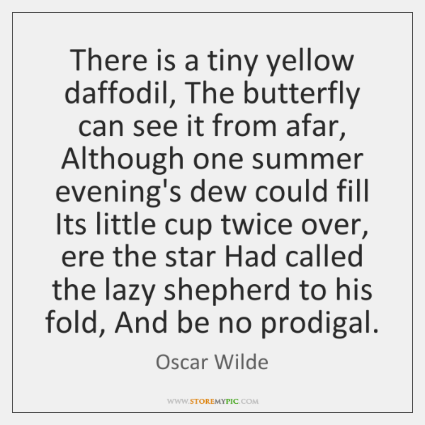 There is a tiny yellow daffodil, The butterfly can see it from ...