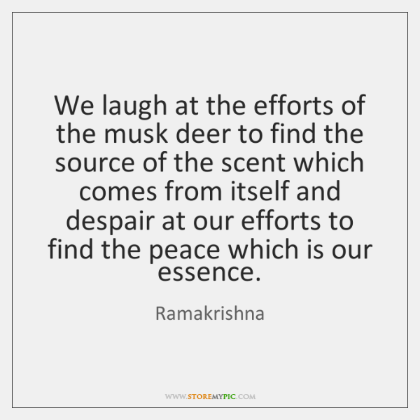 We laugh at the efforts of the musk deer to find the ...