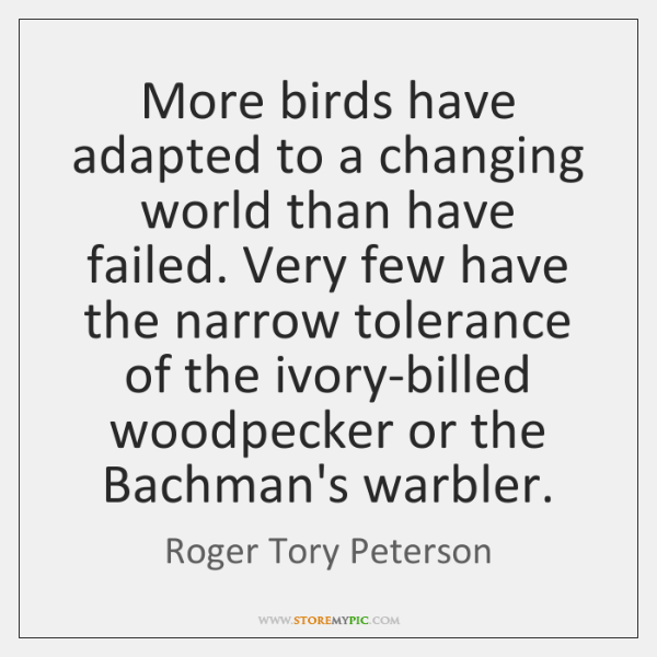 More birds have adapted to a changing world than have failed. Very ...
