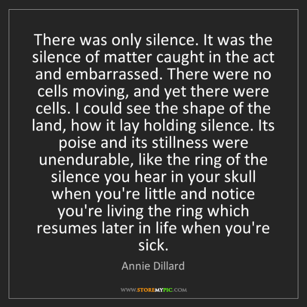 Annie Dillard: There was only silence. It was the silence of matter...