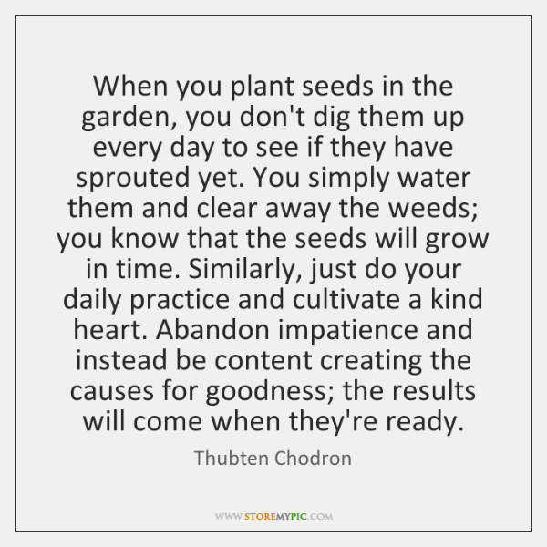 When you plant seeds in the garden, you don't dig them up ...