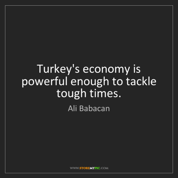 Ali Babacan: Turkey's economy is powerful enough to tackle tough times.