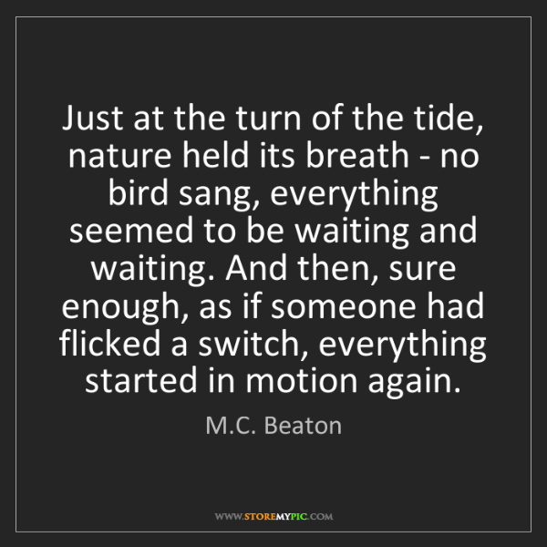 M.C. Beaton: Just at the turn of the tide, nature held its breath...