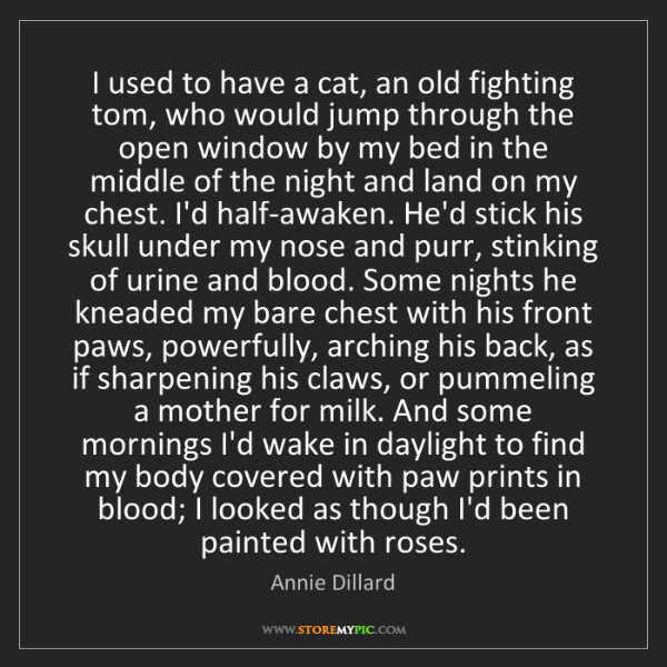 Annie Dillard: I used to have a cat, an old fighting tom, who would...