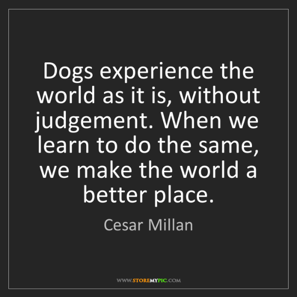 Cesar Millan: Dogs experience the world as it is, without judgement....