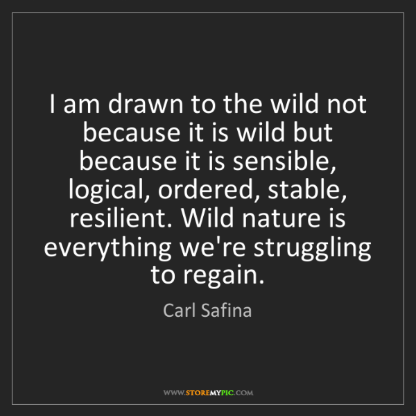 Carl Safina: I am drawn to the wild not because it is wild but because...