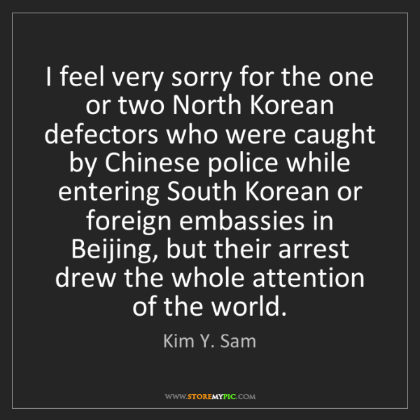 Kim Y. Sam: I feel very sorry for the one or two North Korean defectors...