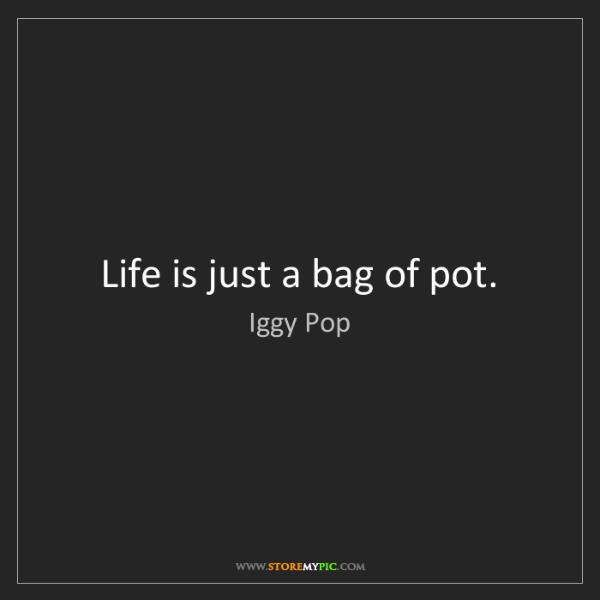 Iggy Pop: Life is just a bag of pot.