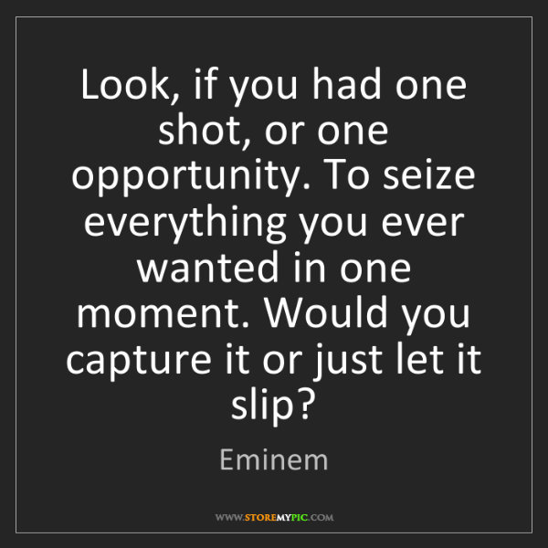 Eminem: Look, if you had one shot, or one opportunity. To seize...