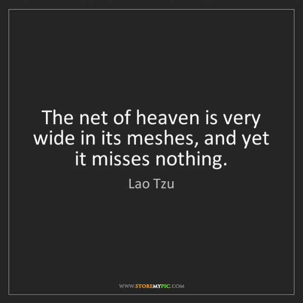 Lao Tzu: The net of heaven is very wide in its meshes, and yet...