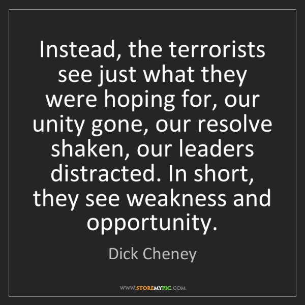 Dick Cheney: Instead, the terrorists see just what they were hoping...
