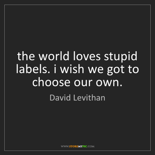 David Levithan: the world loves stupid labels. i wish we got to choose...
