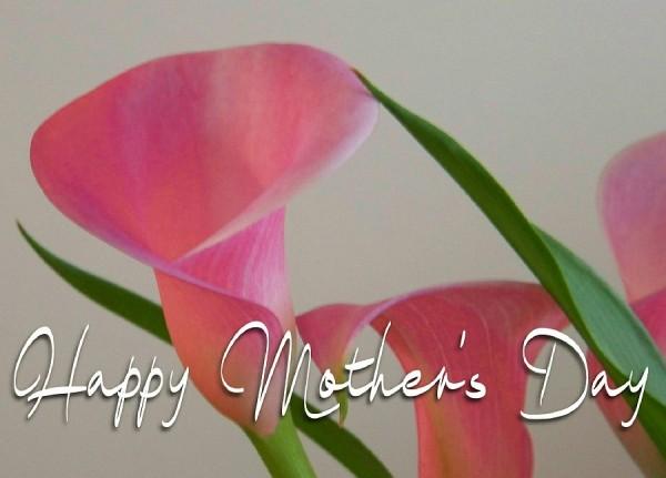 Happy Mother's Day Calla