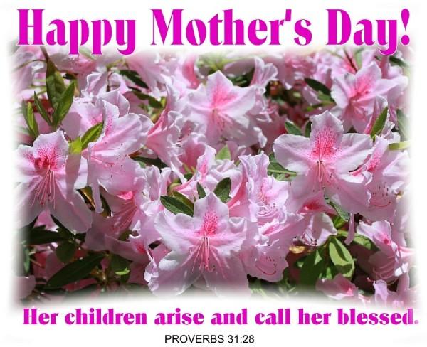 Mother's Day Azaleas