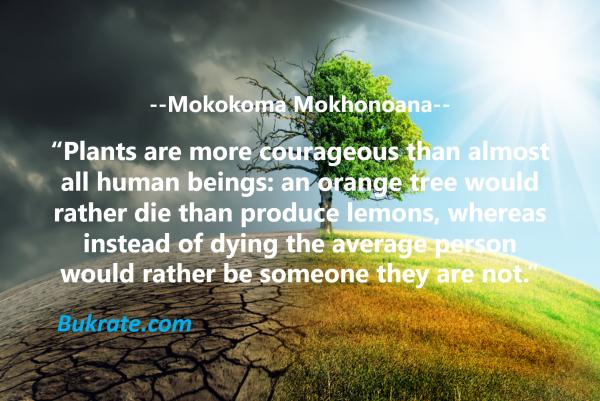 Mokokoma Mokhonoana quotes